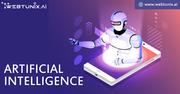 AI Consulting Company   AI Products
